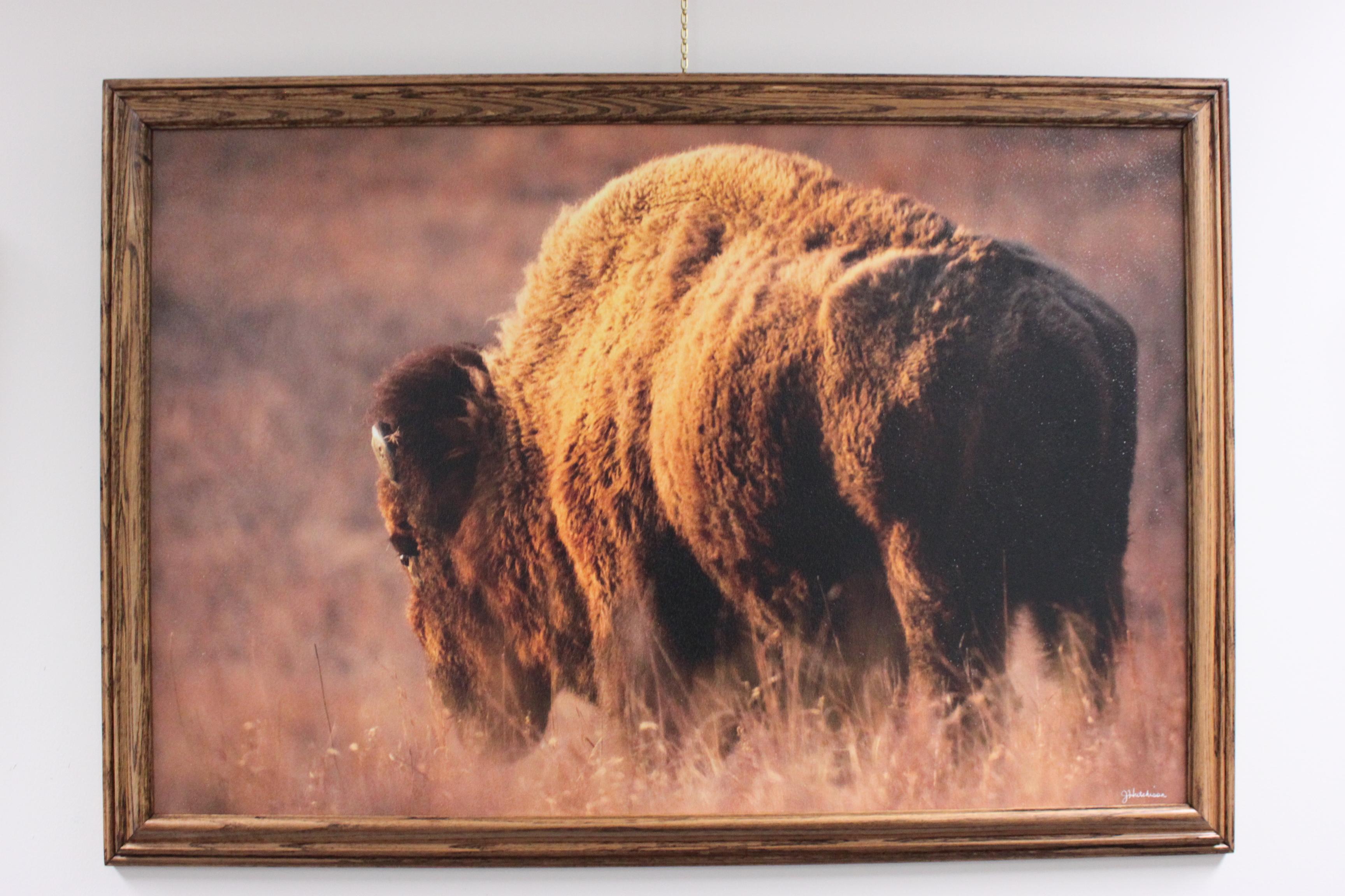 Golden Hour Stroll, Maxwell Wildlife Refuge, Canton, KS