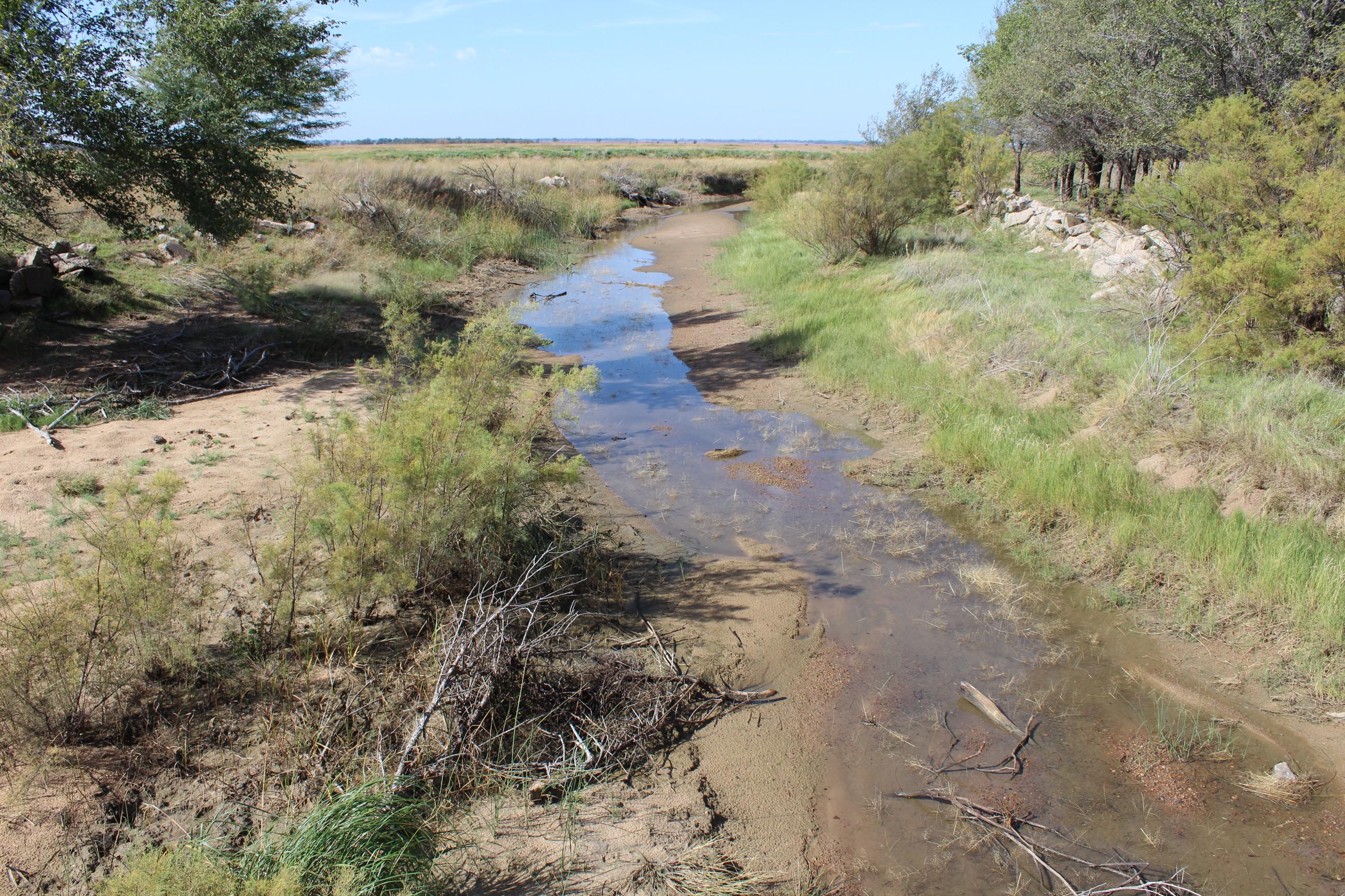 Rattlesnake Creek, near Quivira National Wildlife Refuge. (Photo by J. Schafer)