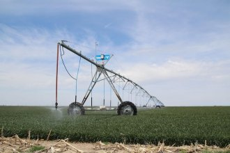 Center pivot irrigation sprinklers water a wheat field in Finney County. (Photo by David Condos, Kansas News Service)