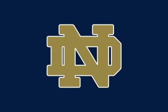 One of the University of Notre Dame's logos. The other is a fighting Irishman.