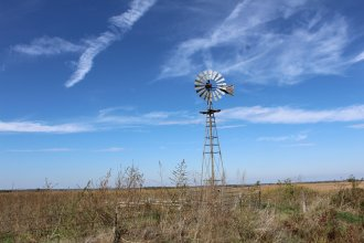 Windmills, both new and old (like this one in Stafford County), are a common feature of the Kansas landscape. Can you name another one? (Photo by J. Schafer)