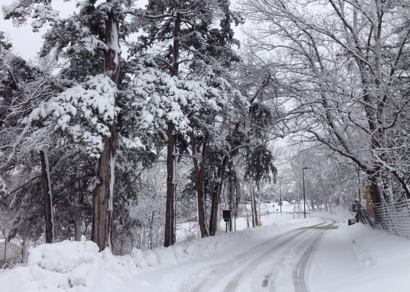 A snow-covered road winds through a winter scene in Lawrence, Kansas. (Photo by J. Schafer)