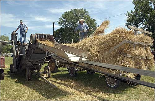 This photo appeared in a 2004 article in the Lawrence Journal-World, with a caption that read: Bob Klinkenberg, of Tonganoxie, and Nathan Gardner, of McLouth, demonstrate how to thresh wheat the old-fashioned way during the McLouth Threshing Bee.